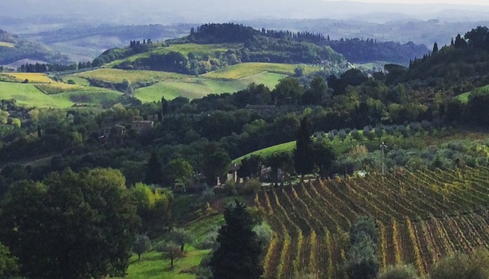 Wine Around Italy-Our Italian Honeymoon