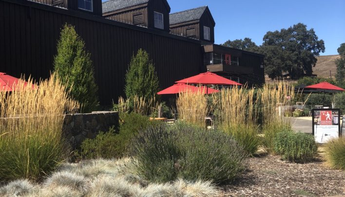 Roth Estate Winery Visit